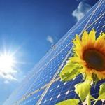 Fotovoltaico-girasole